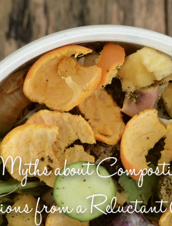 5 myths about composting